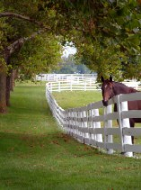 Horse Properties in Eastern PA
