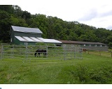 Horse Properties Northampton PA For Sale